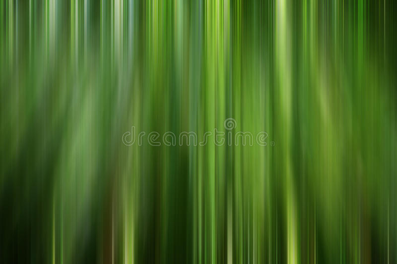 Bamboo forest abstract royalty free illustration