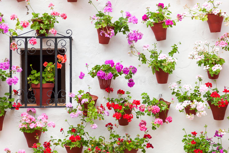 Beautiful Window and Wall Decorated Flowers - Old European Town, Cordoba, Spain stock image