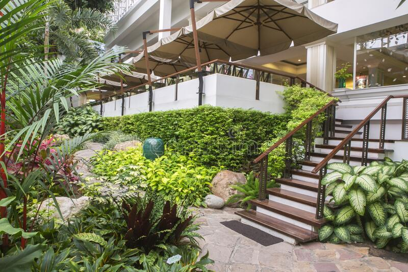 Chon Buri, Thailand March 28,2015 : wood stair way down to tropical garden luxury indoor green house. Garden at Dusit Thaini Pattaya, Thailand royalty free stock photography