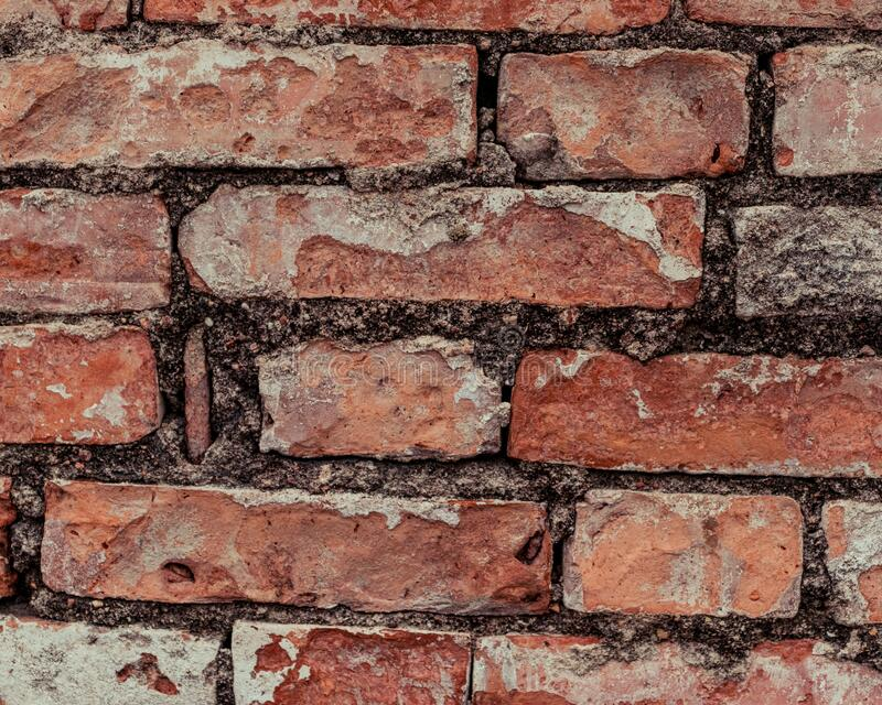 Close up of Red brick wall. Close up of Red brick wall with black grouting. Age has damaged the stones stock photos