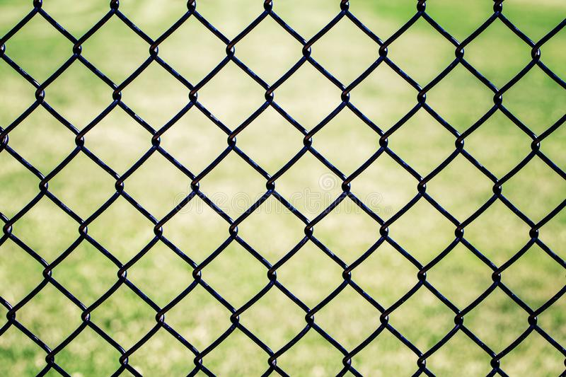 Closeup of black metal netting wire mesh fence against green field meadow. Texture pattern surface background. Of  chain link wire-mesh rabitz stock images