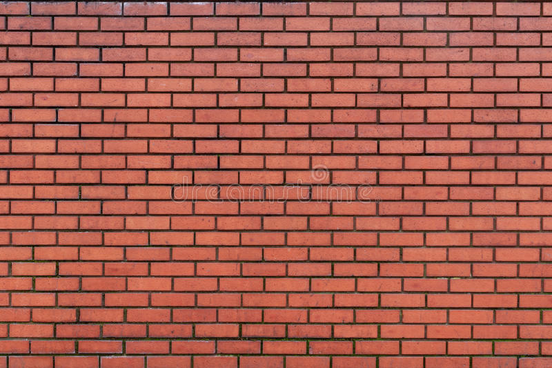 Dark Red Brick Wall. Background of lightly weathered dark red brick wall with dark grouting royalty free stock images
