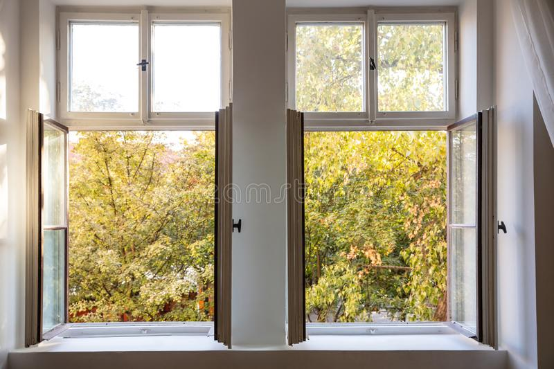 Fall season. Trees with autumn leaves out of two open white wooden windows. Fall, autumn season. Trees with yellow leaves out of two open white wooden windows stock images