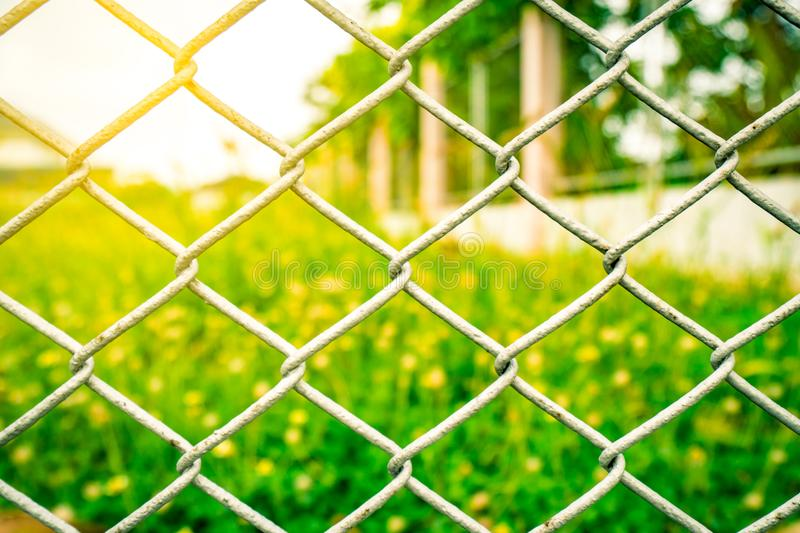 The fence mesh netting on blurred yellow flower field. As the background with flare light royalty free stock photography