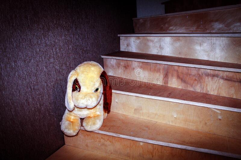 On a wooden staircase leading to the second floor of a residential building, there is a soft toy for small children stock photo
