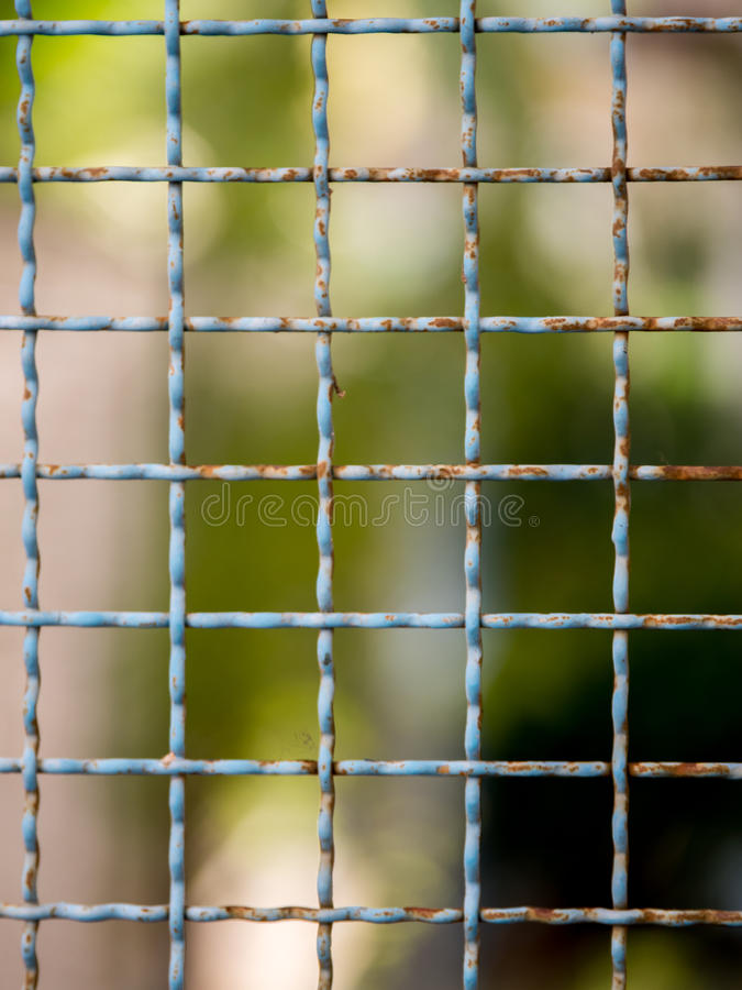 Mesh netting on the blur bokeh. Background royalty free stock image