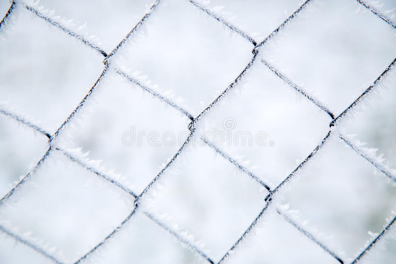 Mesh netting covered with frost. Close-up mesh netting covered with frost royalty free stock photography