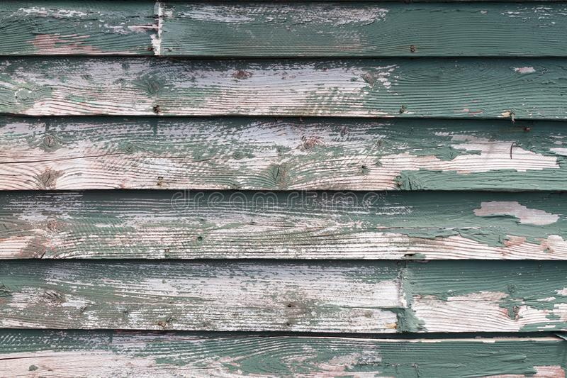 Old green weathered clapboard. With paint missing royalty free stock images