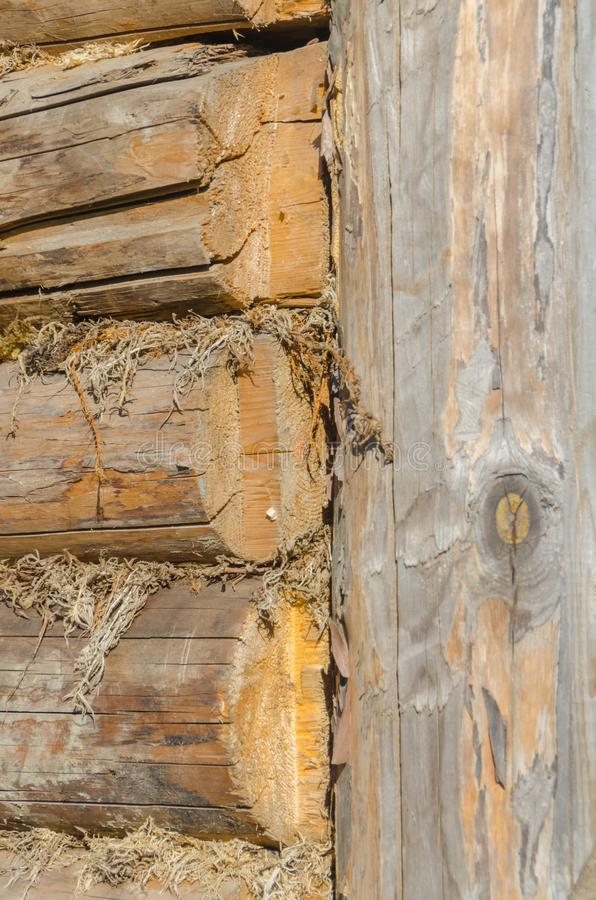 The old walls of the barn in the gap scored moss, insulation. The walls of the barn, in the gap clogged moss, natural, environmentally friendly insulation royalty free stock photography