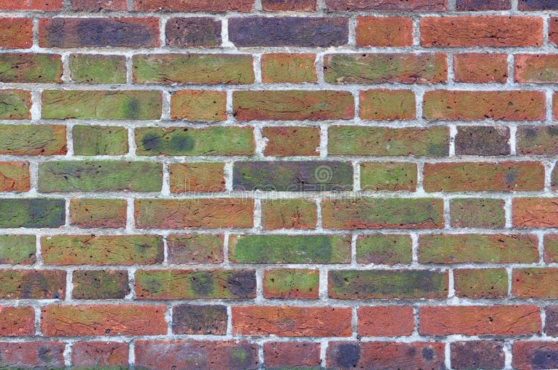 Red Brick Wall Texture. Texture of moss and black stains on old red brick wall stock photos