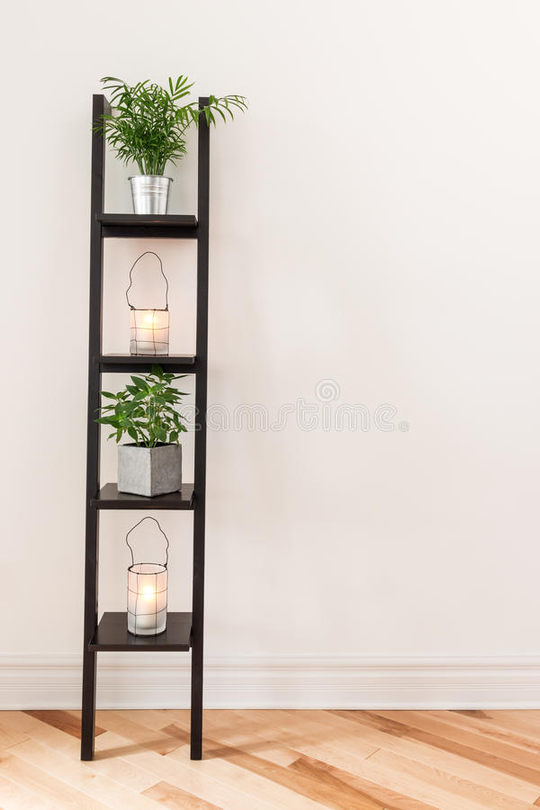 Shelf with plants and lanterns stock image