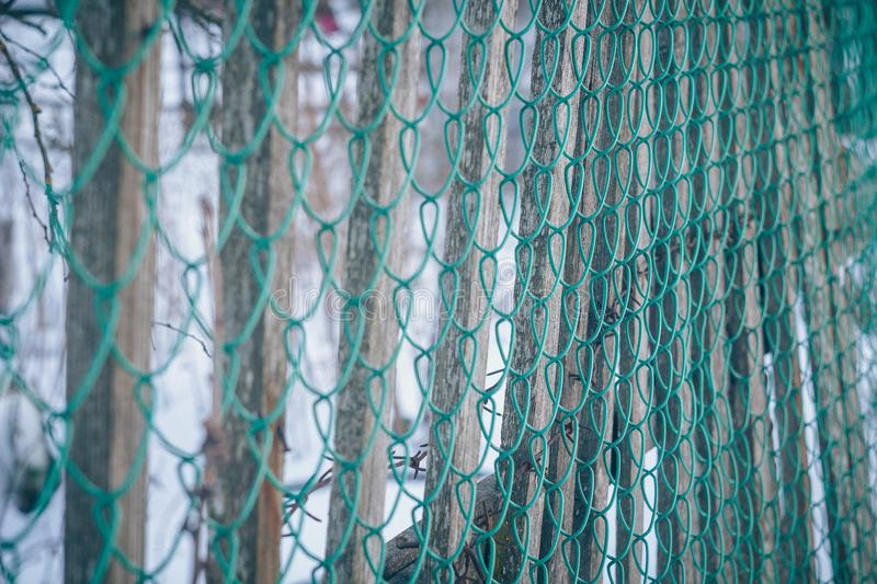 Texture mesh netting. Background fence. Transparent fence. Iron mesh chain-link. Texture mesh netting. Background fence. Transparent fence. Fencing Iron mesh stock photography