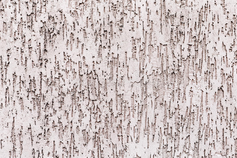 Texture plaster bark beetle royalty free stock images