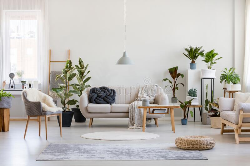 Urban jungle in trendy living room interior with white couch with black knot pillow and wooden furniture, copy space on empty wall stock photography