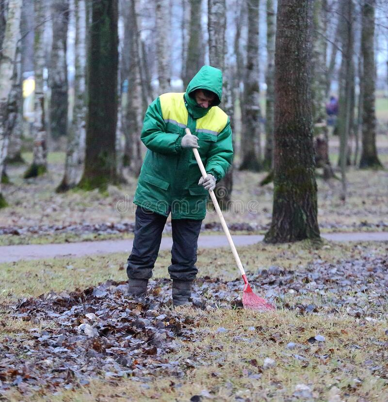 A worker removes fallen autumn leaves in a Park royalty free stock photos